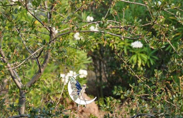 Moon Fairy in a Tree
